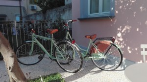 biciclette-camilla-noleggio